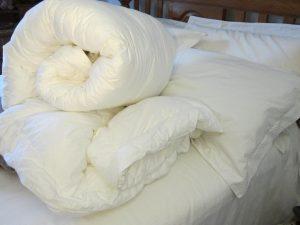 Ruột chăn chống khuẩn